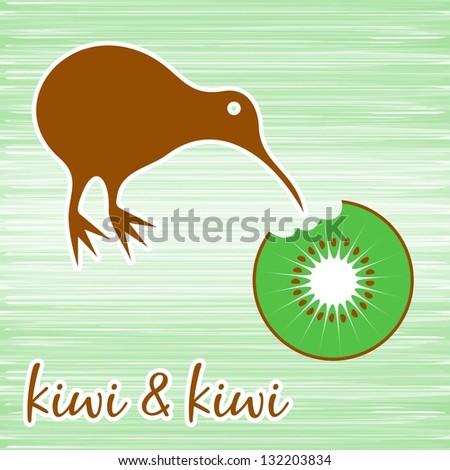New Zealand Kiwi Bird Stock Images, Royalty-Free Images & Vectors ...
