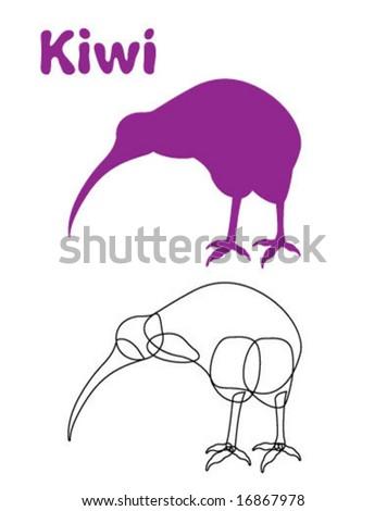 Kiwi Bird Illustration - stock vector