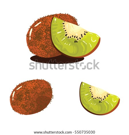 Kiwi Fruit Fresh Realistic Vector Illustration