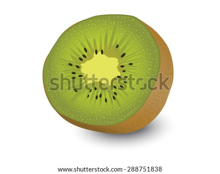 kiwi fruit, kiwi fruit isolated white background
