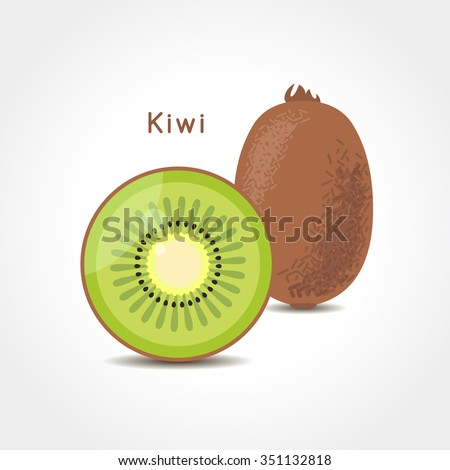 Kiwi fruit vector illustration. Sliced juice kiwi on the white background.