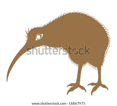 Kiwi hairy Bird - stock vector
