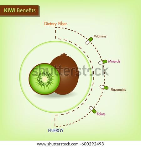 Kiwi Fruit Diagram Search For Wiring Diagrams