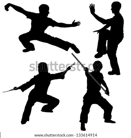 Kung Fu Fighter...