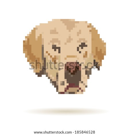 Labrador abstract isolated on a white backgrounds, vector illustration