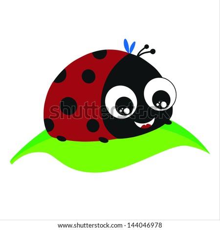 Ladybird Vector - stock vector