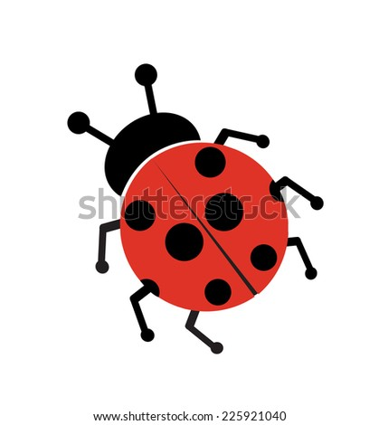 Ladybug isolated on white  - stock vector