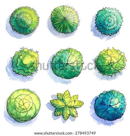 Landscape design watercolor tree sketch stock vector for Landscape and garden design sketchbooks