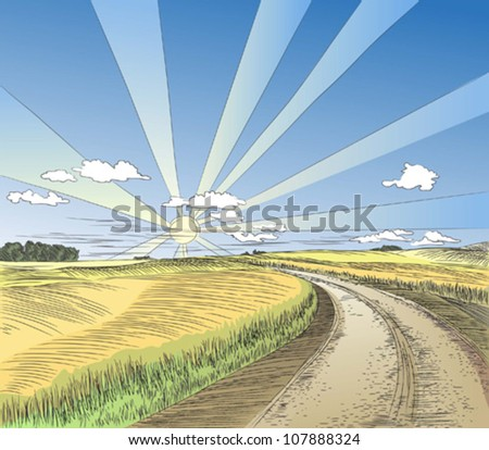 landscape, road to the field, vector illustration, color and lines in different layers - stock vector