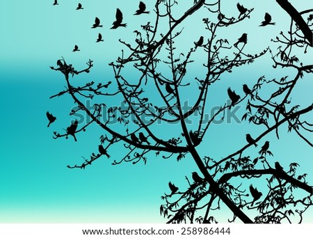 Landscape Scene of branch big Tree Silhouetted against a Beautiful Cloudy Sky at Sunset and bird.oak branch vector. - stock vector