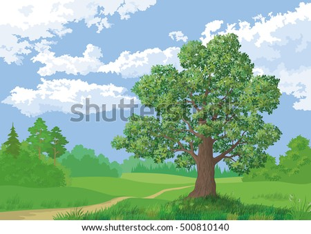 Landscape, Summer Green Forest, Oak Tree and Blue Cloudy Sky. Vector