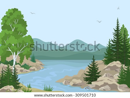 Landscape with Birch, Fir Trees and Grass on the Rocky Bank of a Mountain River under a Blue Sky with Birds. Vector