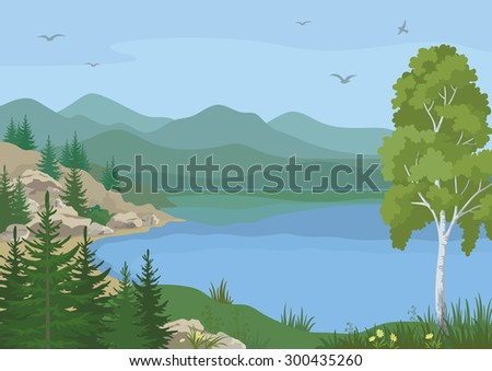 Landscape with Birch, Fir Trees, Flowers and Grass on the Shore of a Mountain Lake under a Blue Sky with Birds. Vector - stock vector