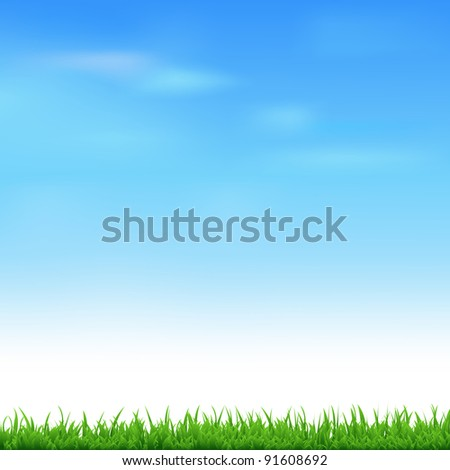 Landscape With Grass, Vector Illustration - stock vector
