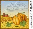 Landscape with pumpkins. Vector - stock photo