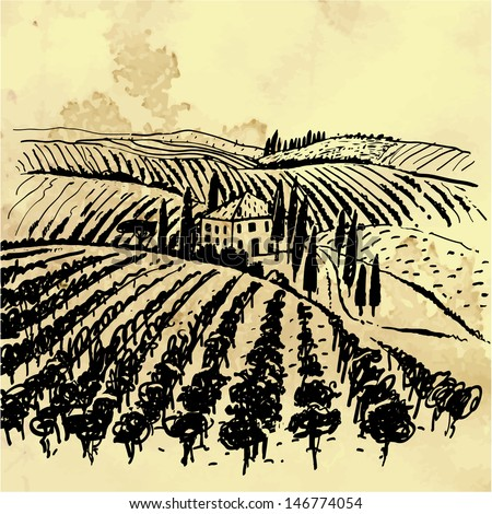 Landscape with vineyard and mountains. Reminiscent of images on wine labels. - stock vector
