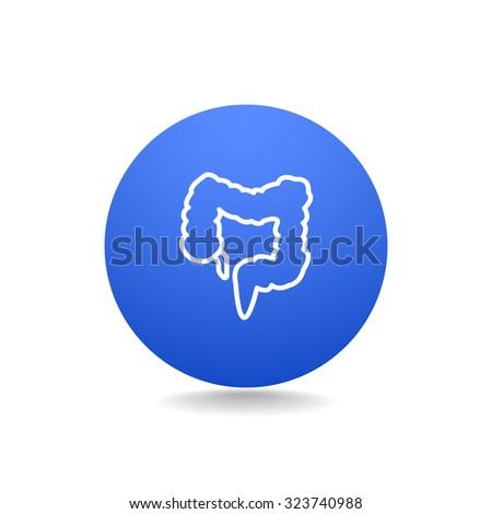 large intestine - stock vector