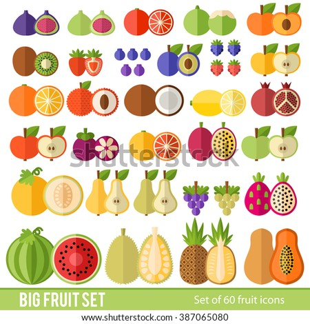 Large Set of fruit and berries in a flat style. Tropical fruits, berries, citrus fruits. Fruit in a cut. Juicy colorful fruit in a flat style. - stock vector