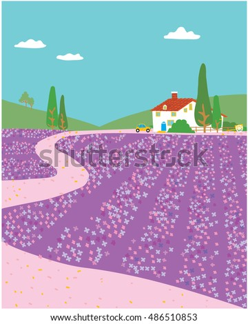 Lavender fields.  Vector illustration
