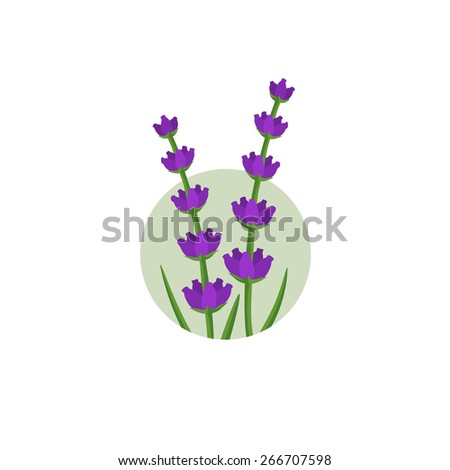 Lavender flowers in the round shape logo - stock vector
