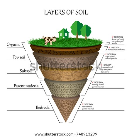 Layers soil education diagram mineral particles em vetor stock layers of soil education diagram mineral particles sand humus and stones ccuart Image collections