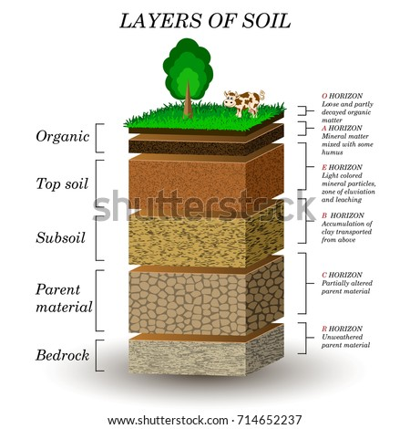 Soil stock images royalty free images vectors for Mineral soil definition