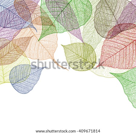Leaf abstract skeleton background. Vector, EPS10. - stock vector