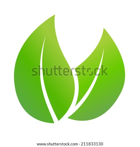 Leaf concept on a white background, Vector illustration - stock vector