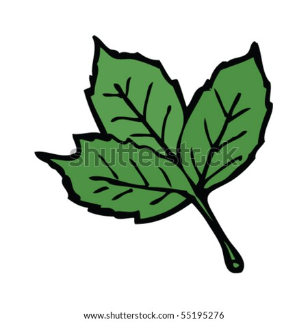 leaf drawing - stock vector