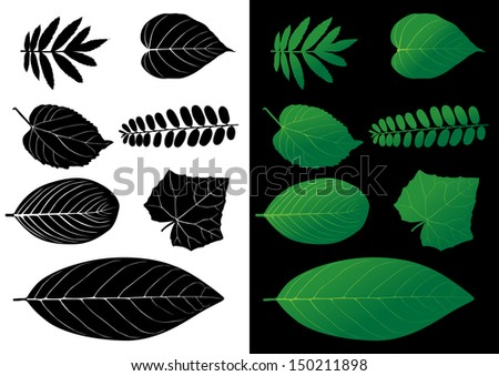 Leaf Silhouette Vector Illustrations  - stock vector