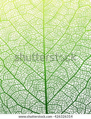 Leaf vector texture pattern. EPS10.