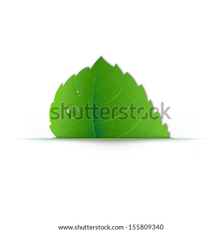 Leaf With Divider With Gradient Mesh, Vector Illustration - stock vector