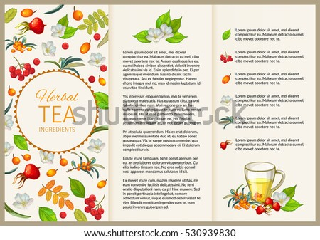 Leaflet Tea with herbal and fruit folding paper flyer for brochure presentation. Vector illustration.