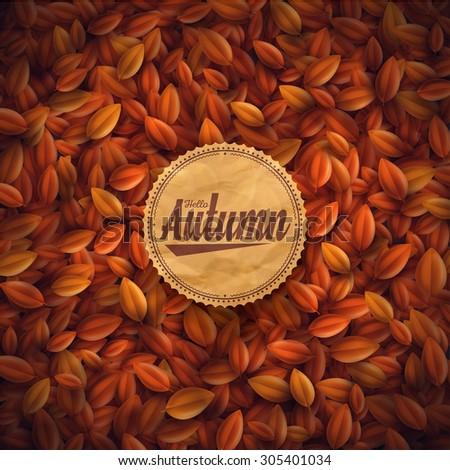 Leaves background, hello autumn, eps 10 - stock vector