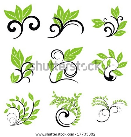 Leaves. Elements for design. Vector illustration. - stock vector