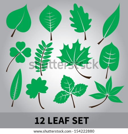 leaves icon set eps10