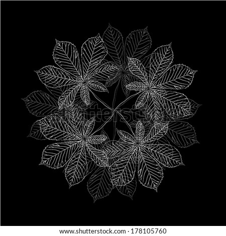 leaves of a tree on a black background. Vector - stock vector