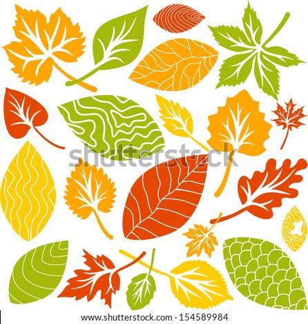 Leaves set - stock vector