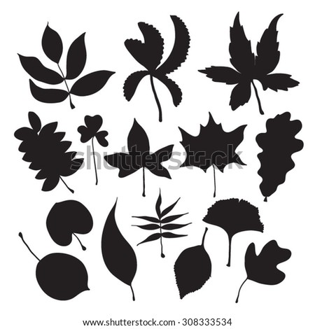 Leaves silhouette black set - stock vector