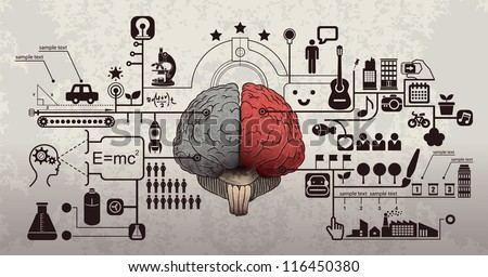 Left and right brain functions,  Cerebral function and analytical thinking concept - stock vector