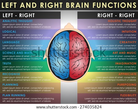 Left and right brain functions, Cerebral function. Illustration, EPS 10. - stock vector