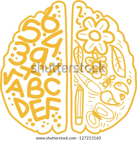 Left and right brain functions.vector - stock vector