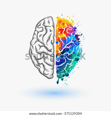 Left and right hemisphere of human brain - stock vector