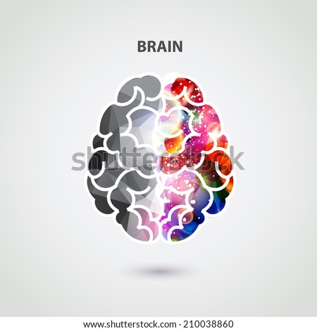 Left and right part of brain - stock vector