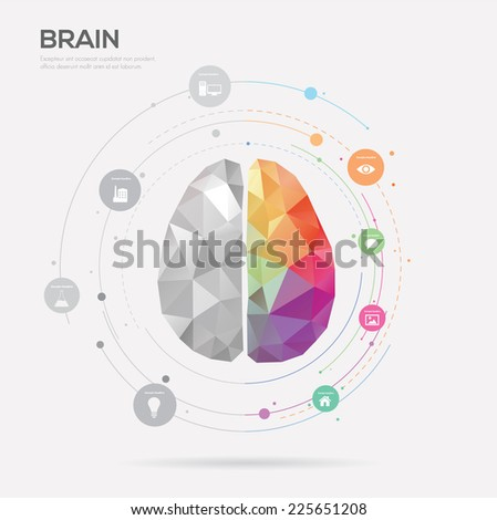 Left brain and right brain Idea concept background .vector illustration - stock vector