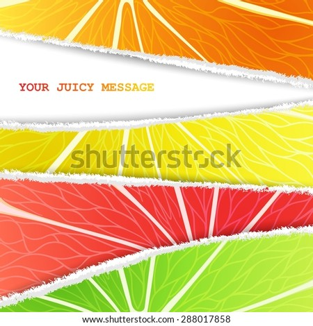 Lemon, lime, orange and grapefruit mixed background in the original torn paper version with free space for text - stock vector