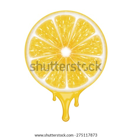 Lemon slice isolated on white. EPS10 vector