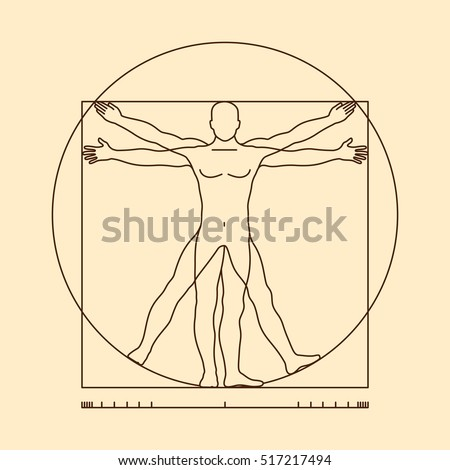 Leonardo da vinci vitruvian man form similar vector. Illustration of body man, classic proportion man