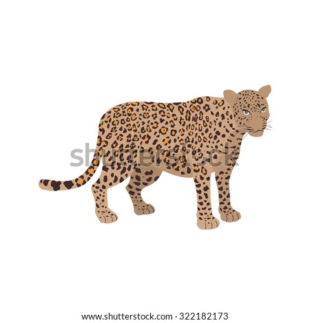 Leopard, fast, jungle icon vector image. Can also be used for Animals and Insects. Suitable for mobile apps, web apps and print media.