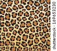 leopard skin background (leopard skin texture) - stock vector